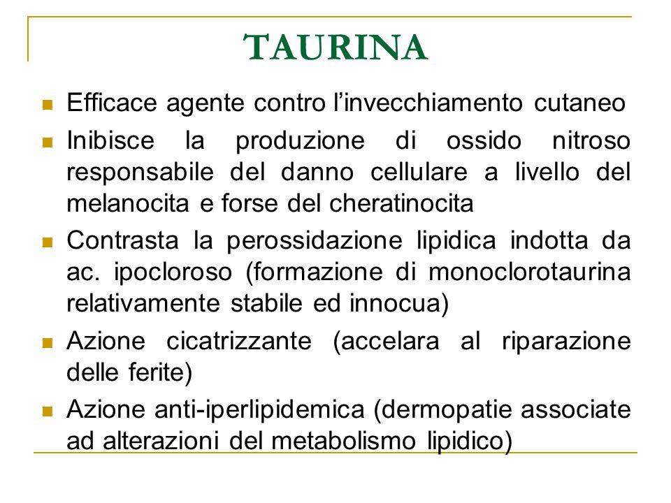 TAURINA Efficace agente contro l'invecchiamento cutaneo