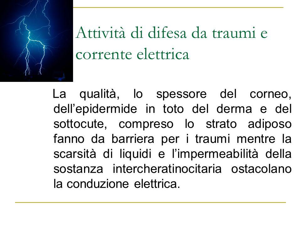 Attività di difesa da traumi e corrente elettrica