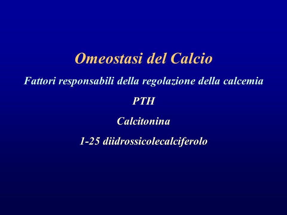Omeostasi del Calcio Fattori responsabili della regolazione della calcemia.