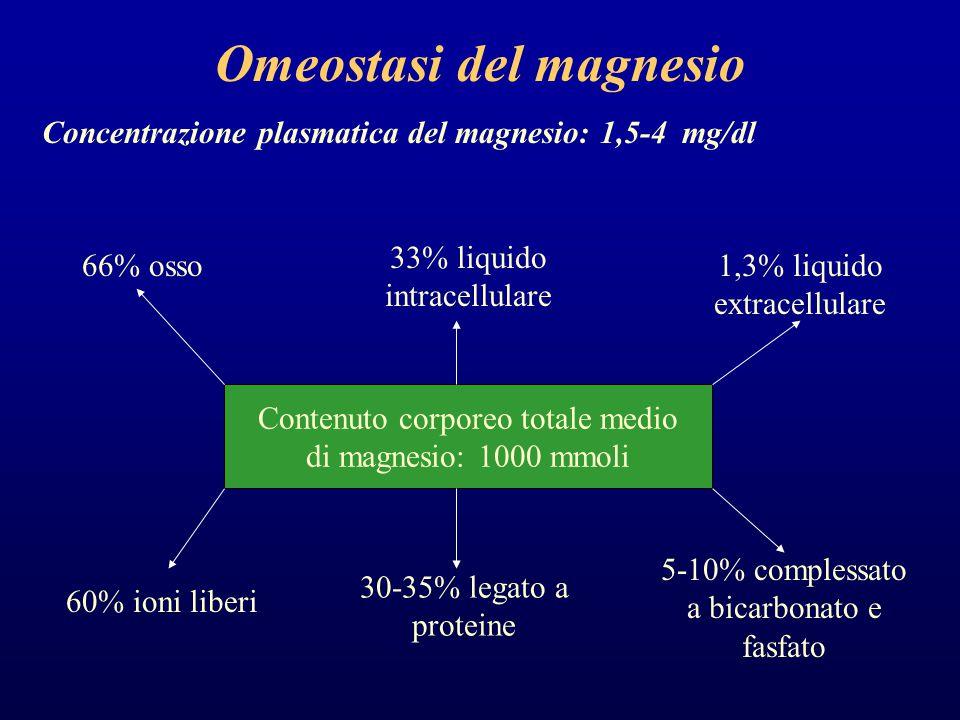 Omeostasi del magnesio