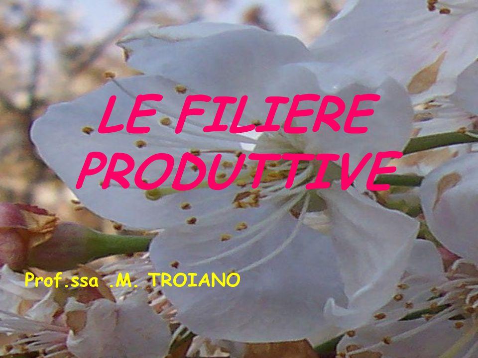 LE FILIERE PRODUTTIVE Prof.ssa .M. TROIANO