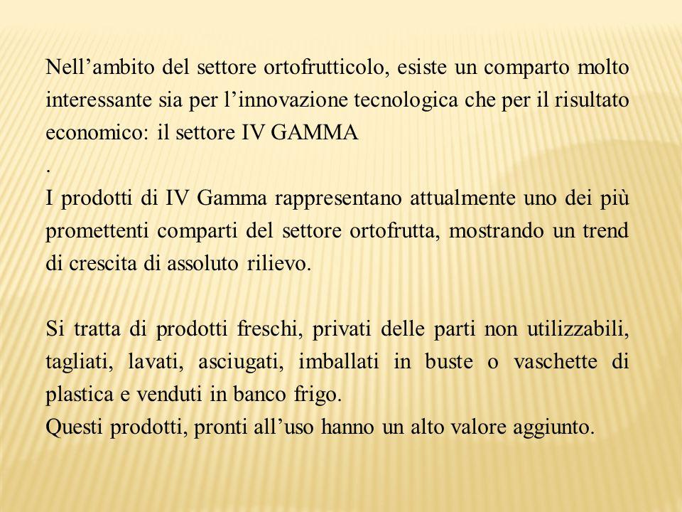 Nell'ambito del settore ortofrutticolo, esiste un comparto molto interessante sia per l'innovazione tecnologica che per il risultato economico: il settore IV GAMMA