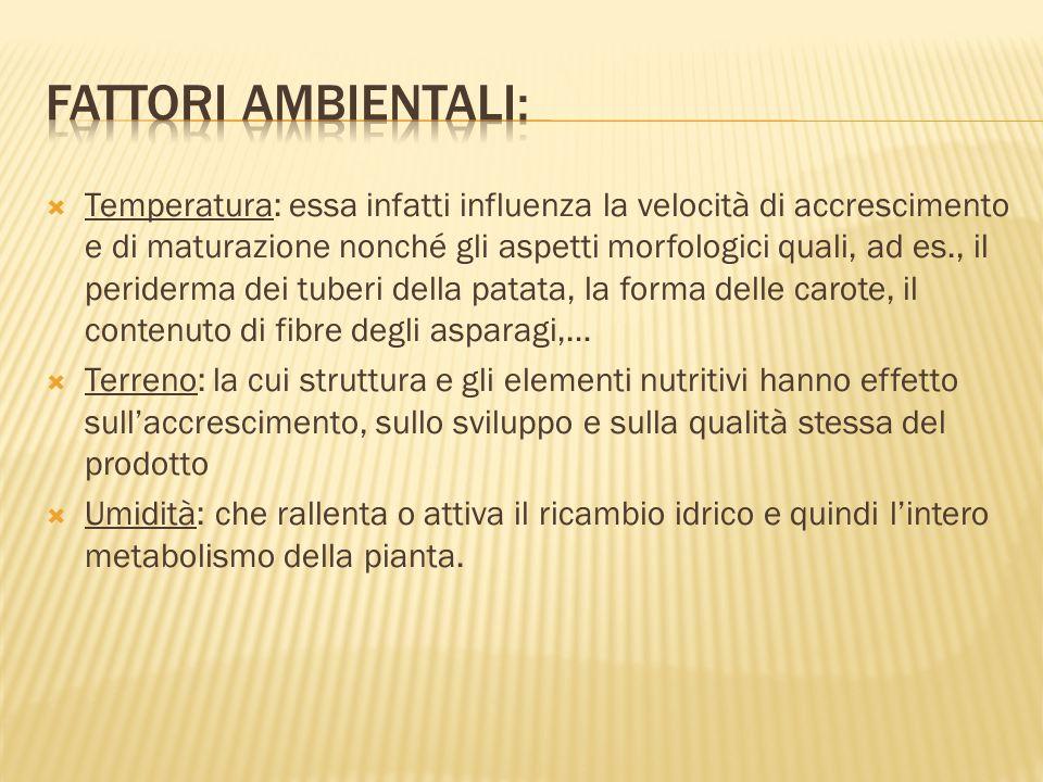 Fattori ambientali: