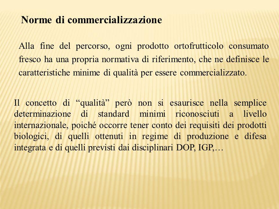 Norme di commercializzazione