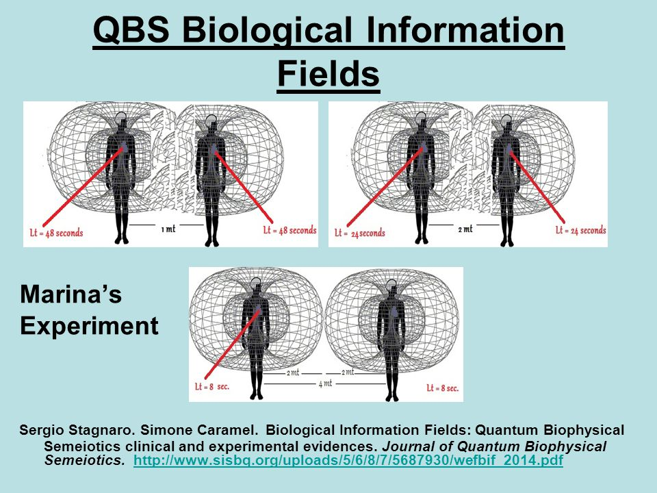 QBS Biological Information Fields