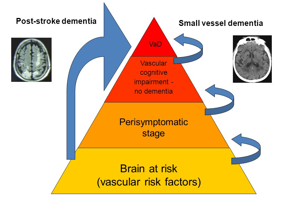 (vascular risk factors)