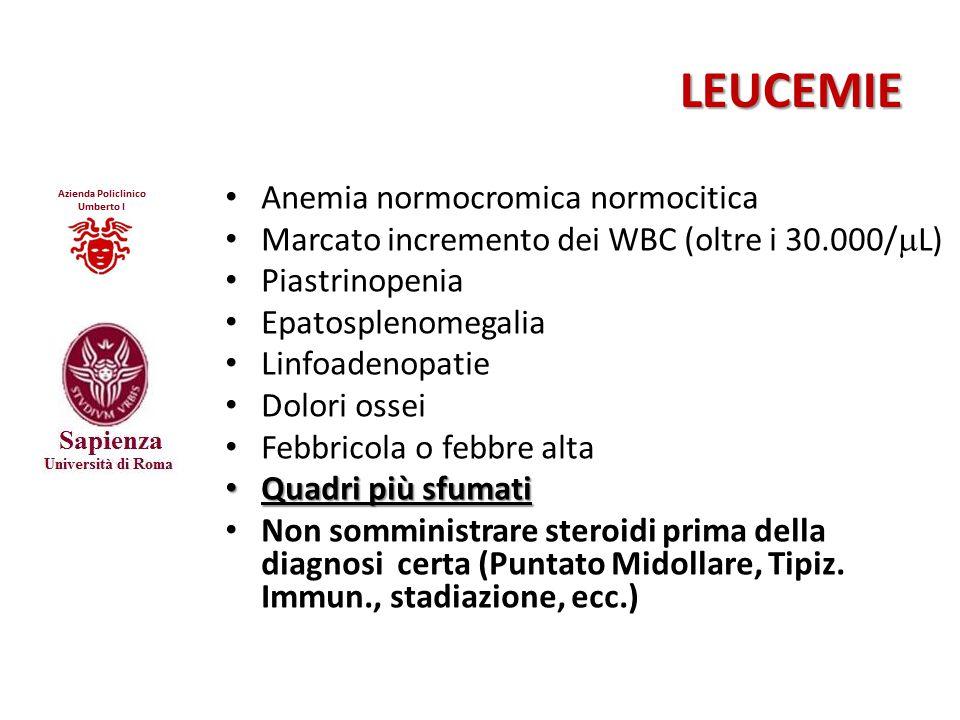 LEUCEMIE Anemia normocromica normocitica