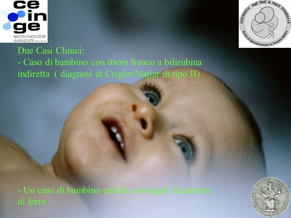 - Un caso di bambino pallido con segni di carenza di ferro