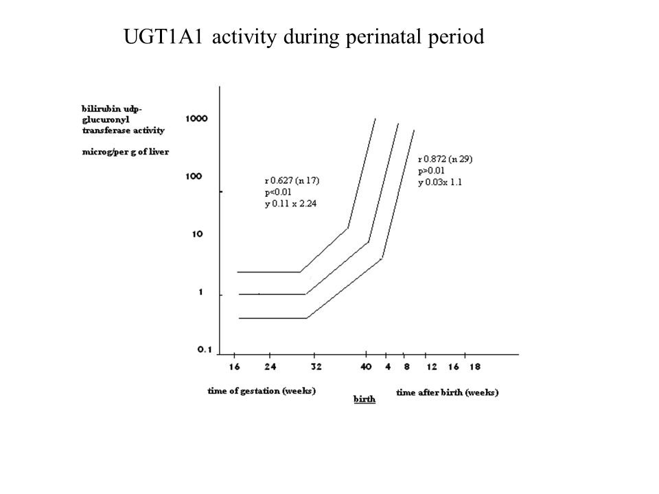 UGT1A1 activity during perinatal period
