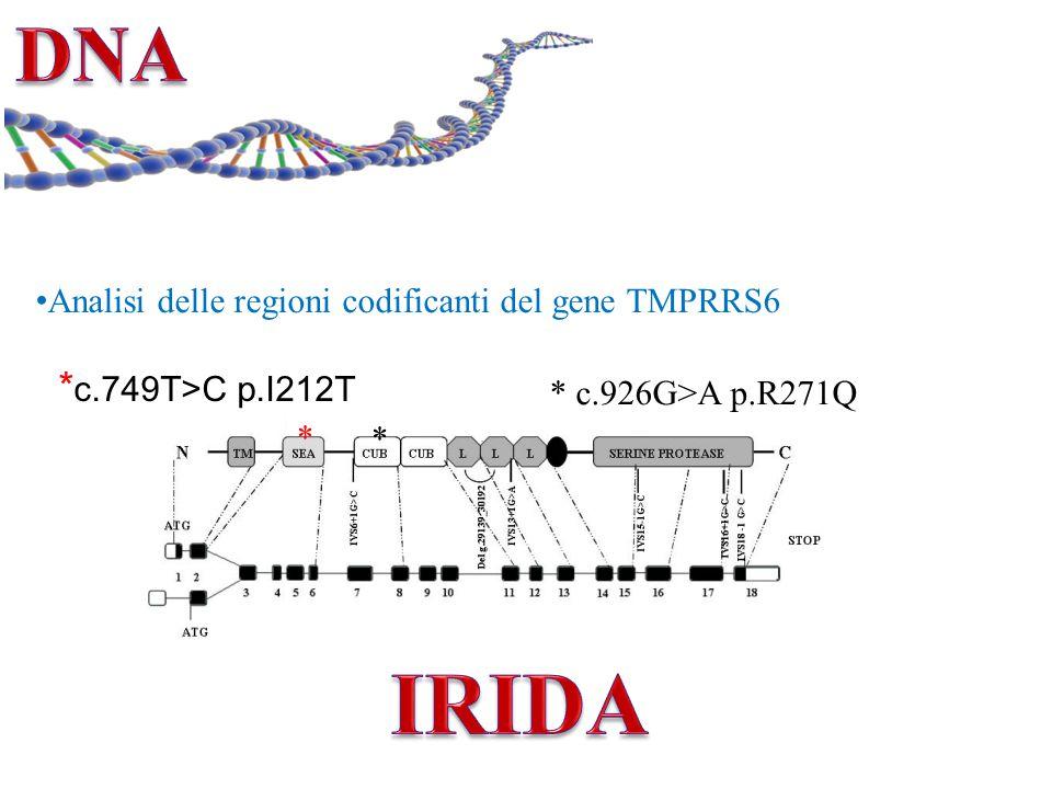 DNA Analisi delle regioni codificanti del gene TMPRRS6. *c.749T>C p.I212T. * c.926G>A p.R271Q. *