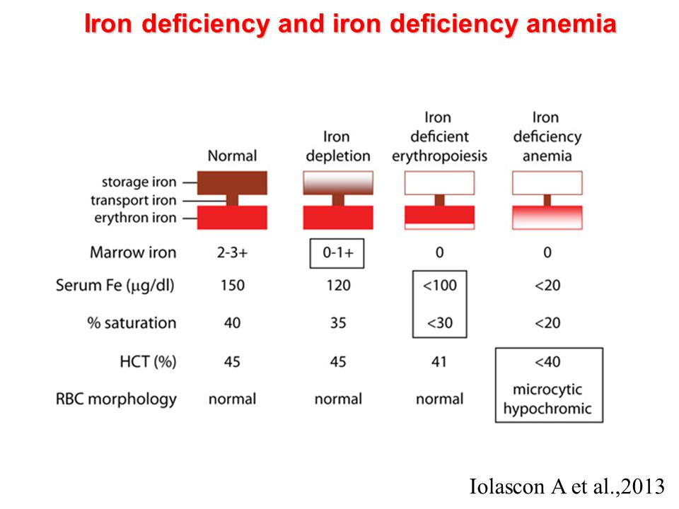 Iron deficiency and iron deficiency anemia