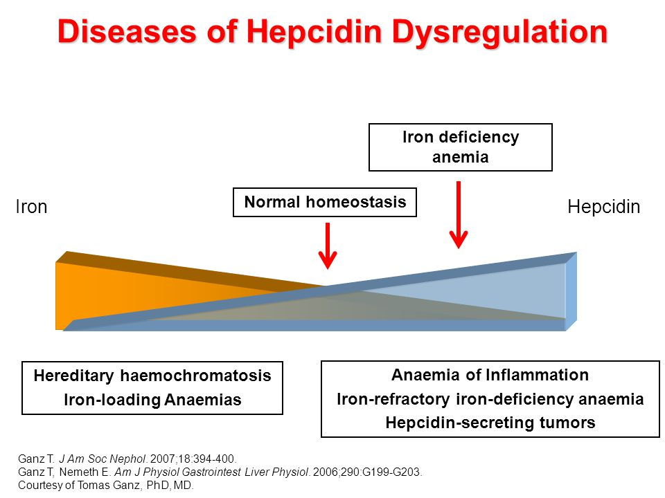 Diseases of Hepcidin Dysregulation