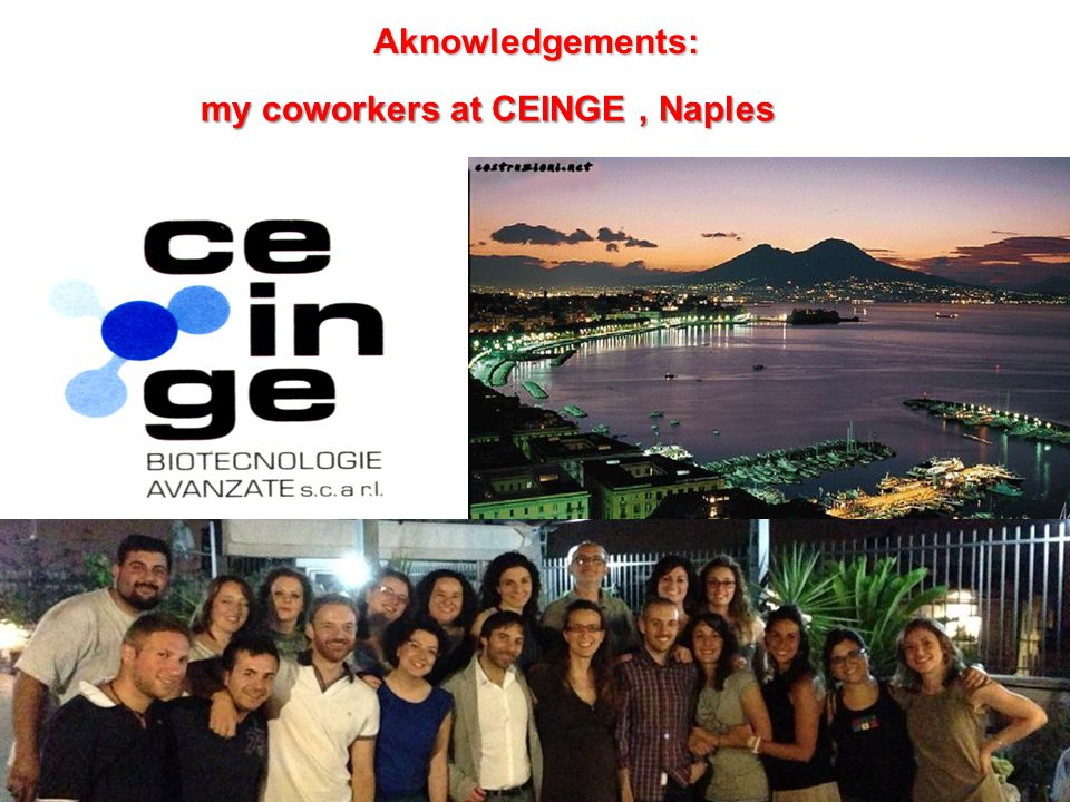 Aknowledgements: my coworkers at CEINGE , Naples