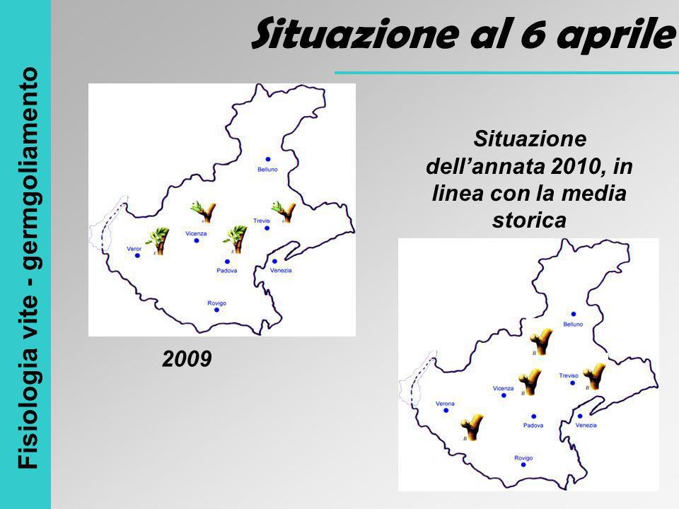 Situazione dell'annata 2010, in linea con la media storica