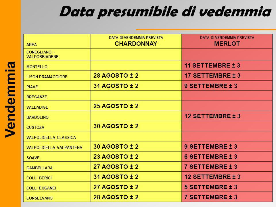 DATA DI VENDEMMIA PREVISTA