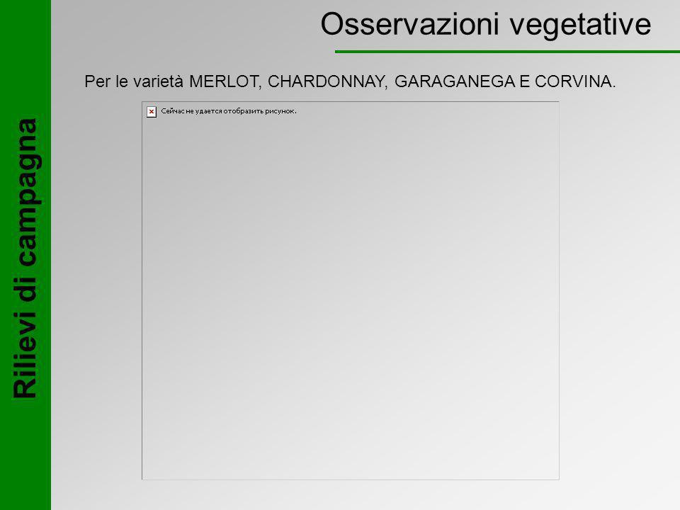 Osservazioni vegetative