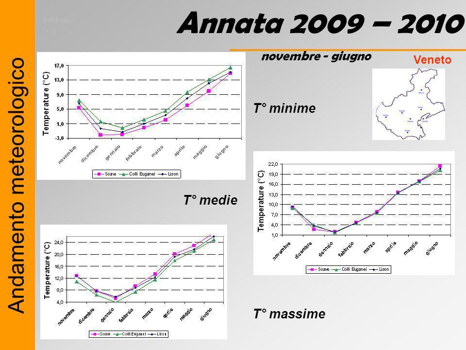 Annata 2009 – 2010 Andamento meteorologico novembre - giugno T° minime