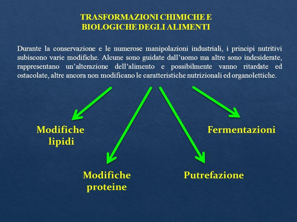 TRASFORMAZIONI CHIMICHE E BIOLOGICHE DEGLI ALIMENTI