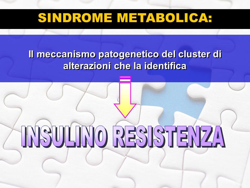 SINDROME METABOLICA: INSULINO RESISTENZA