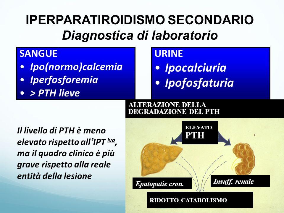 IPERPARATIROIDISMO SECONDARIO Diagnostica di laboratorio