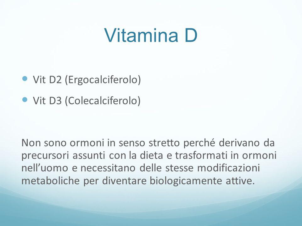 Vitamina D Vit D2 (Ergocalciferolo) Vit D3 (Colecalciferolo)