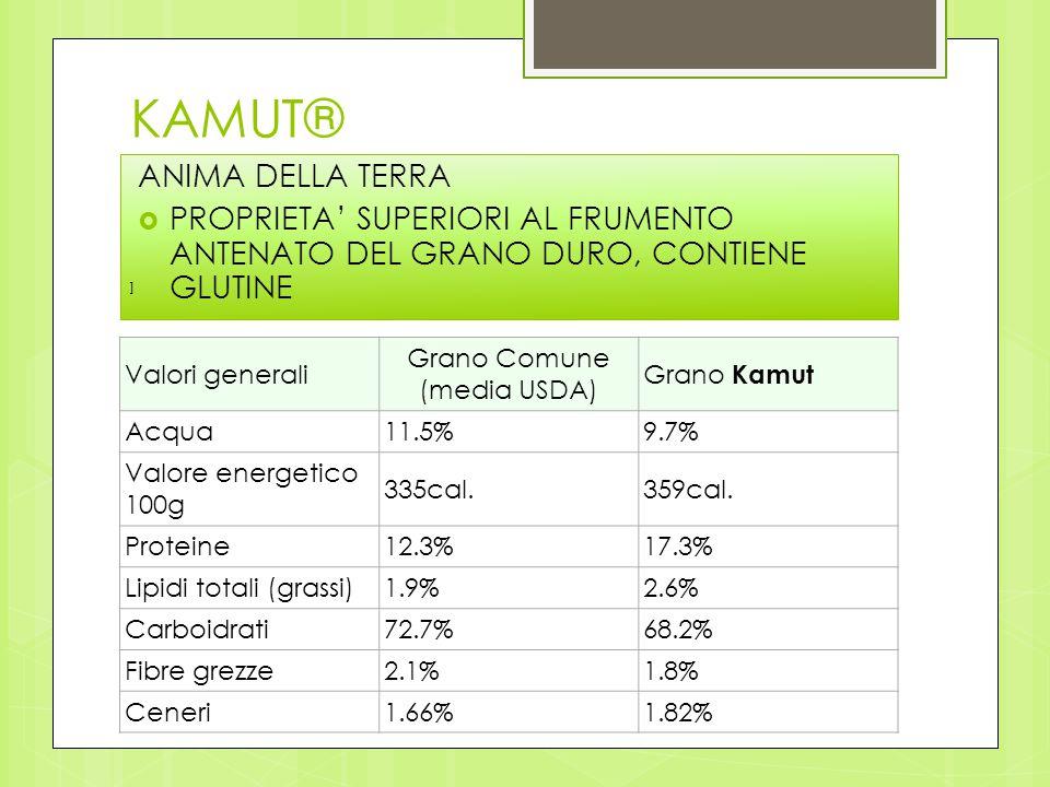 Grano Comune (media USDA)