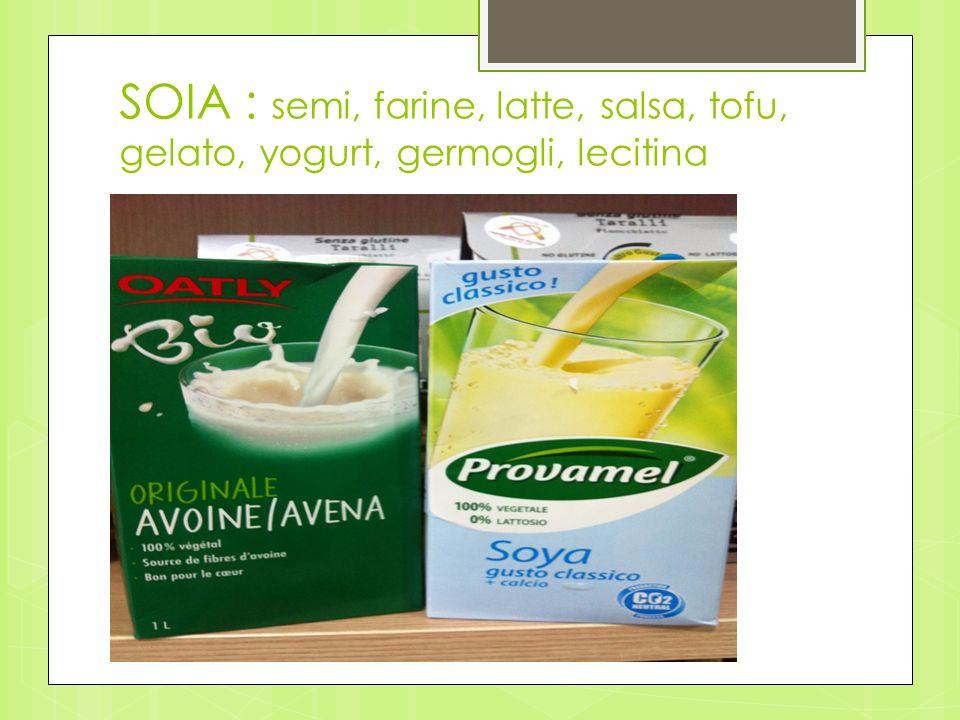 SOIA : semi, farine, latte, salsa, tofu, gelato, yogurt, germogli, lecitina