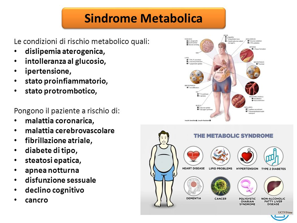 Sindrome Metabolica Le condizioni di rischio metabolico quali: