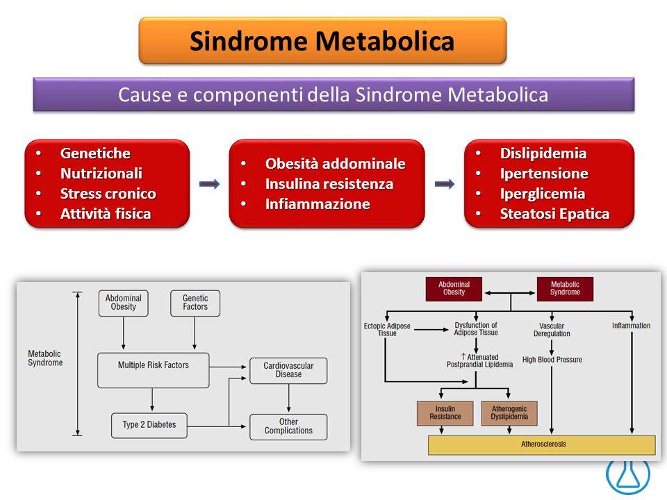 Cause e componenti della Sindrome Metabolica