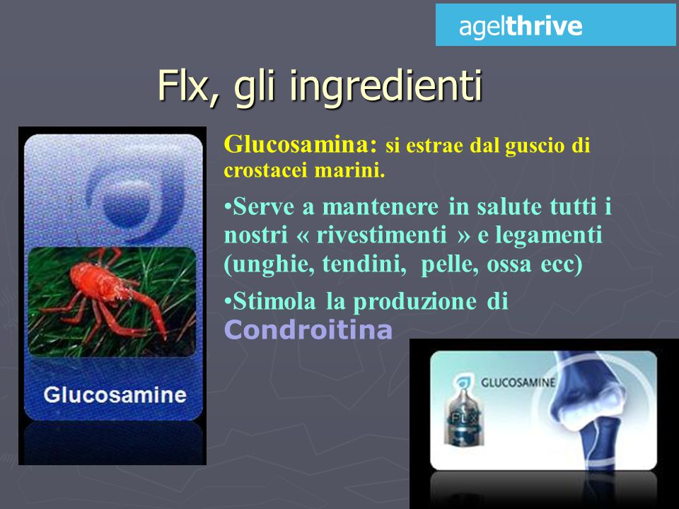 Flx, gli ingredienti agelthrive