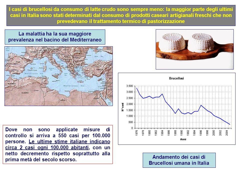 La malattia ha la sua maggiore prevalenza nel bacino del Mediterraneo