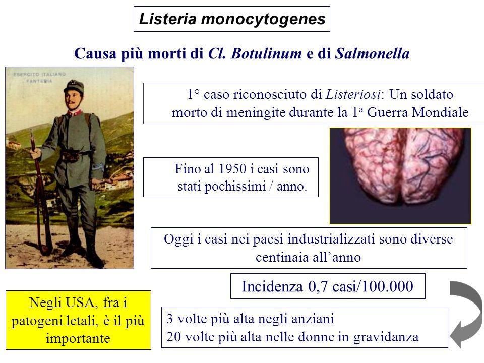 Causa più morti di Cl. Botulinum e di Salmonella