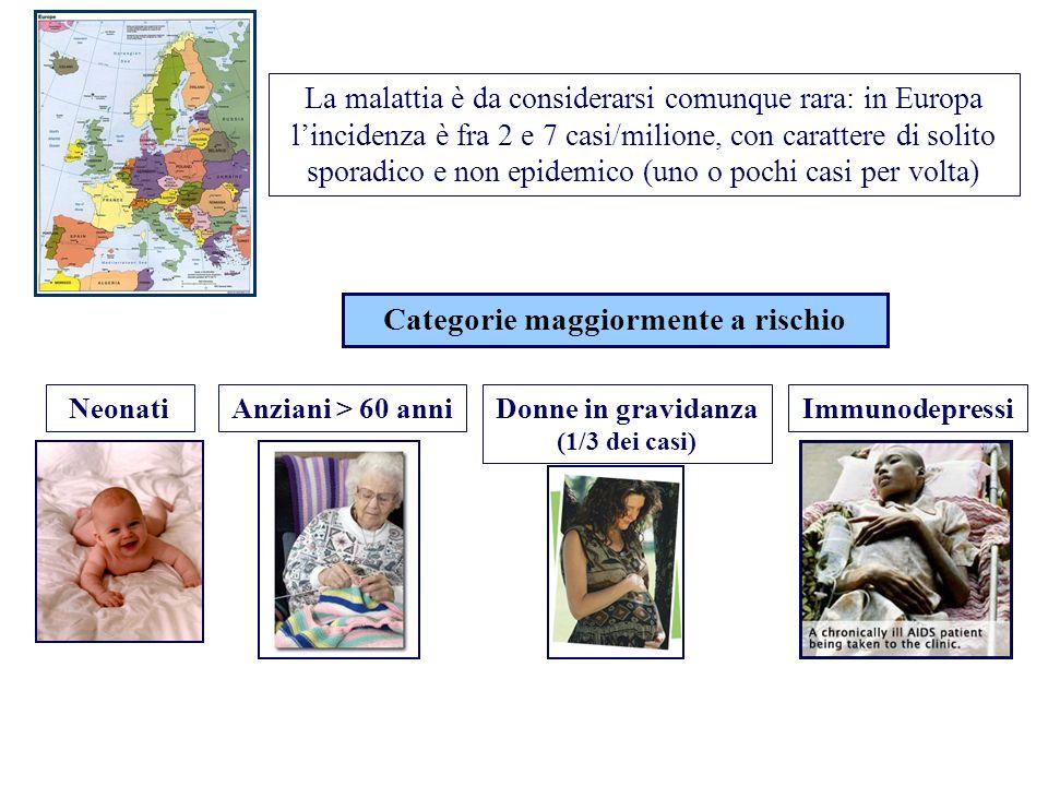 Categorie maggiormente a rischio Donne in gravidanza (1/3 dei casi)