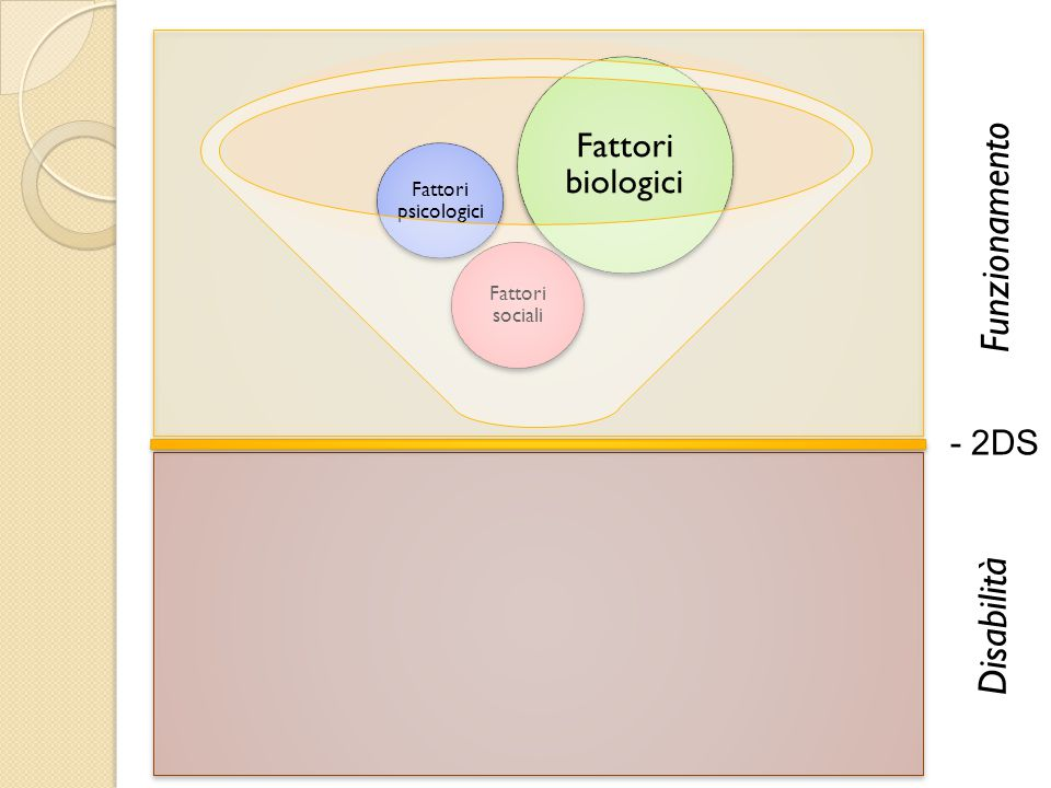 Funzionamento Disabilità Fattori biologici - 2DS Fattori psicologici