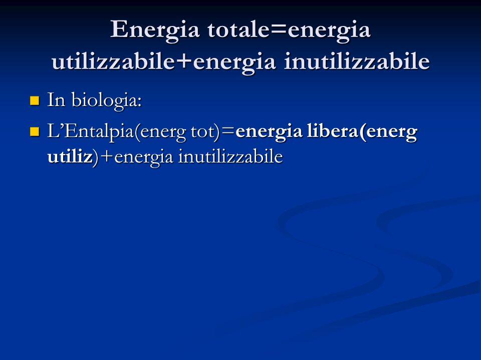 Energia totale=energia utilizzabile+energia inutilizzabile