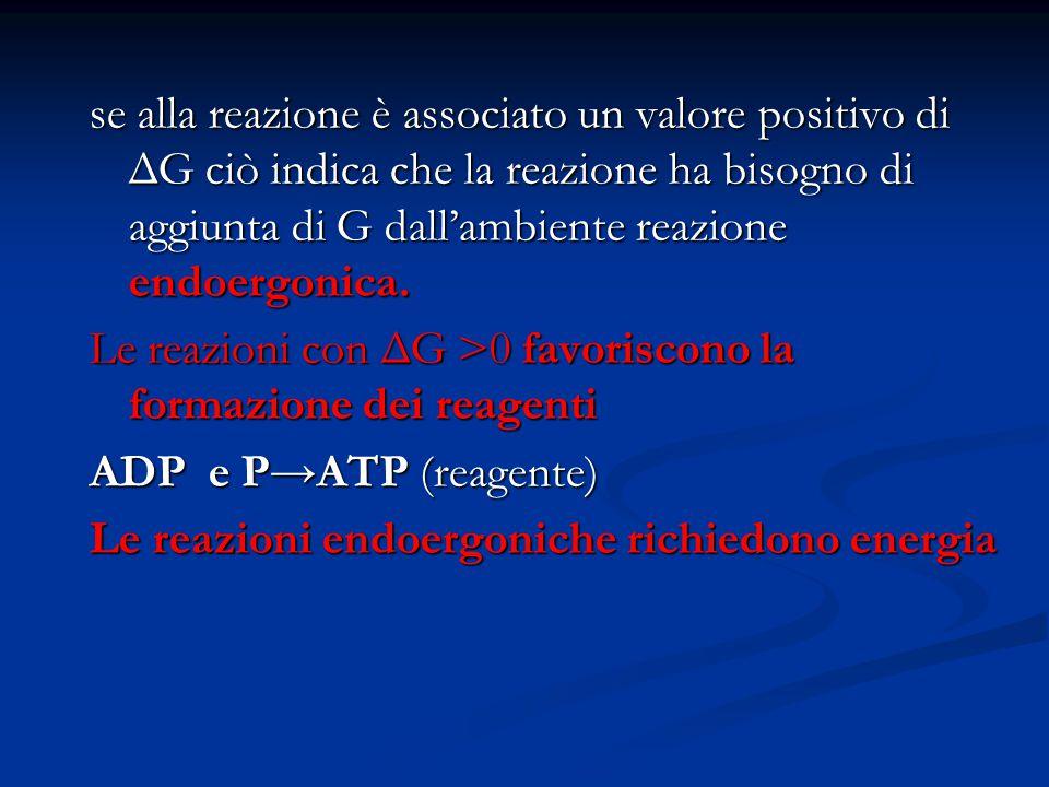 se alla reazione è associato un valore positivo di ΔG ciò indica che la reazione ha bisogno di aggiunta di G dall'ambiente reazione endoergonica.