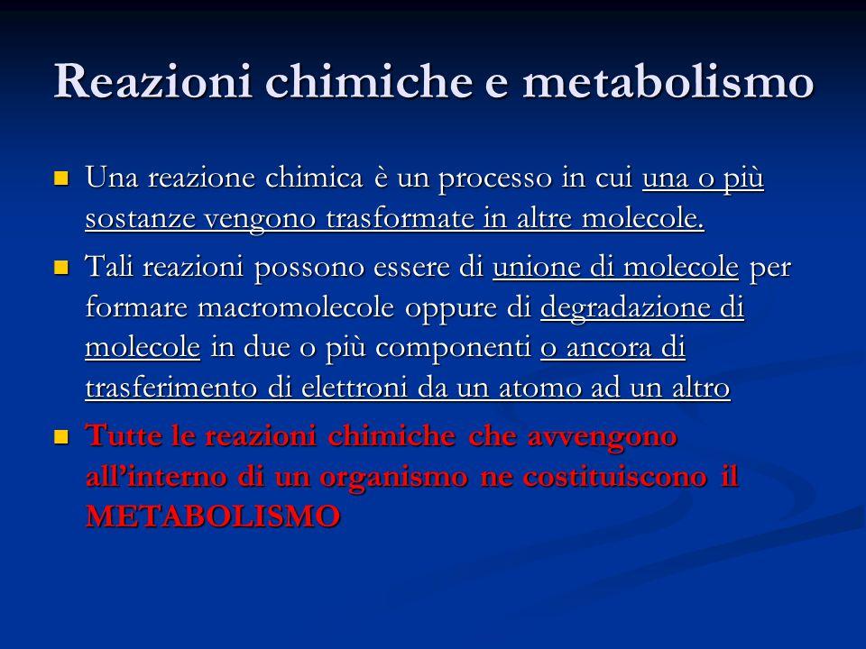 Reazioni chimiche e metabolismo