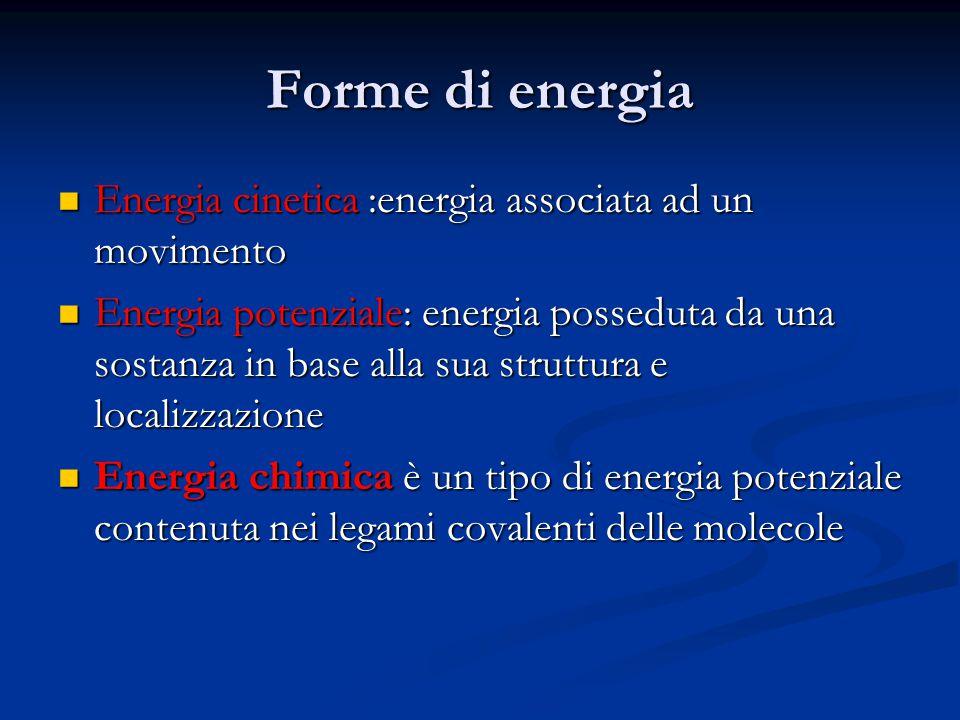 Forme di energia Energia cinetica :energia associata ad un movimento