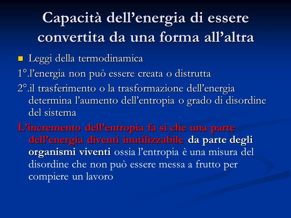 Capacità dell'energia di essere convertita da una forma all'altra