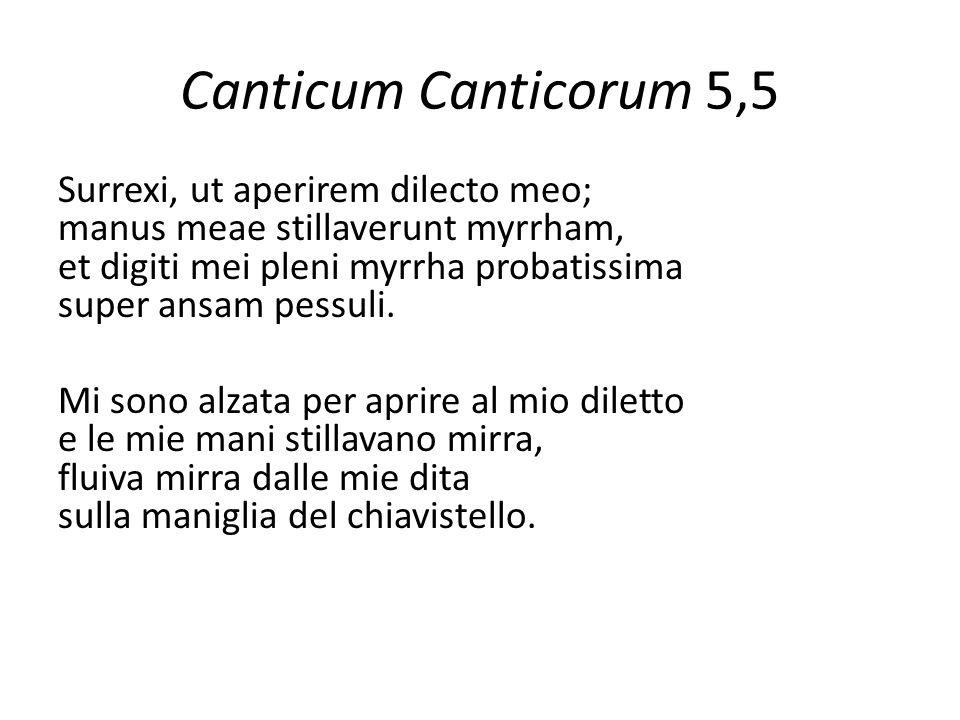 Canticum Canticorum 5,5