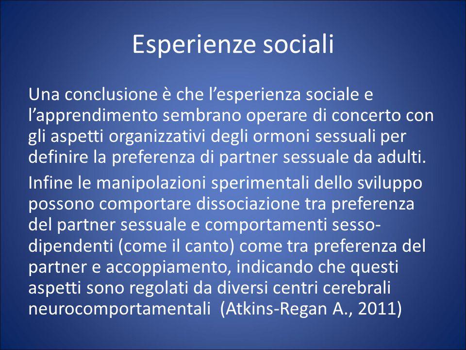 Esperienze sociali