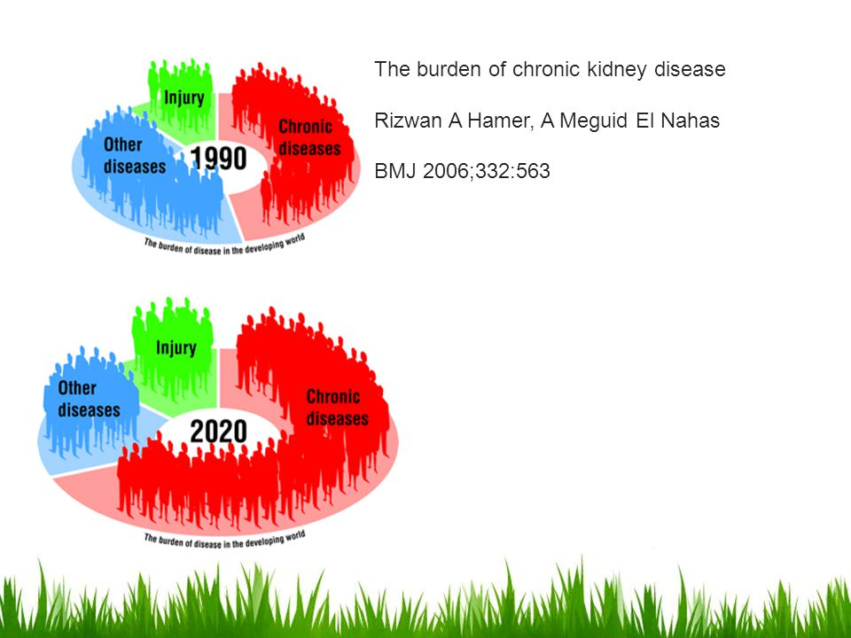 The burden of chronic kidney disease Rizwan A Hamer, A Meguid El Nahas
