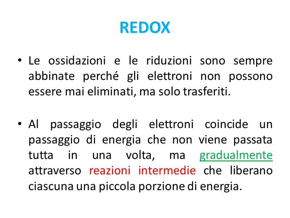 REDOX Le ossidazioni e le riduzioni sono sempre abbinate perché gli elettroni non possono essere mai eliminati, ma solo trasferiti.