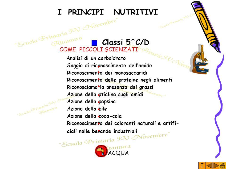 I PRINCIPI NUTRITIVI Classi 5^C/D COME PICCOLI SCIENZATI