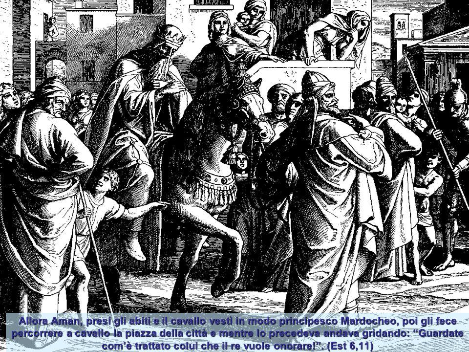 Allora Aman, presi gli abiti e il cavallo vestì in modo principesco Mardocheo, poi gli fece percorrere a cavallo la piazza della città e mentre lo precedeva andava gridando: Guardate com'è trattato colui che il re vuole onorare! .