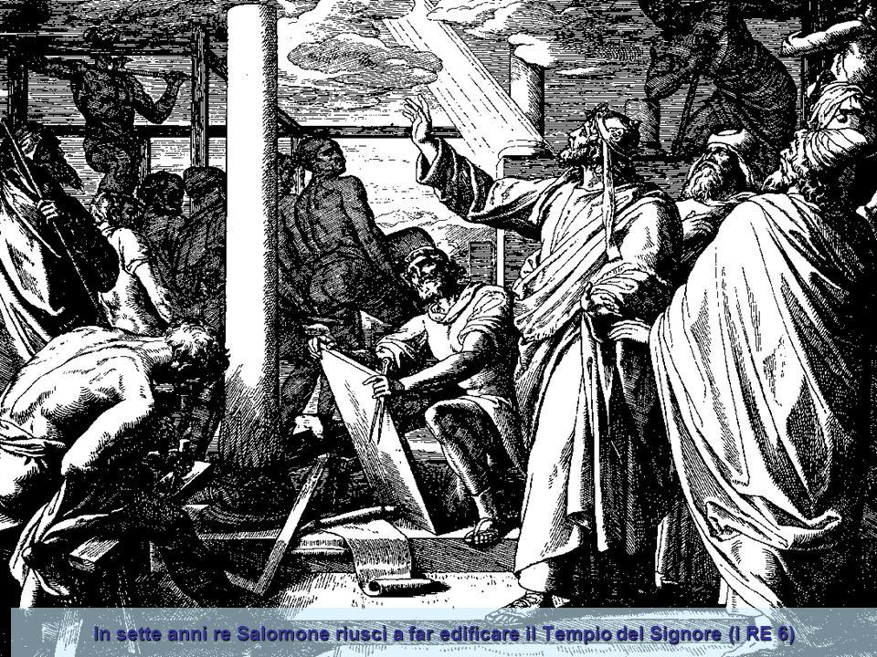 In sette anni re Salomone riuscì a far edificare il Tempio del Signore (I RE 6)