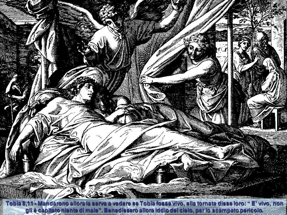 Tobia 8,11 - Mandarono allora la serva a vedere se Tobia fosse vivo, ella tornata disse loro: E' vivo, non gli è capitato niente di male .