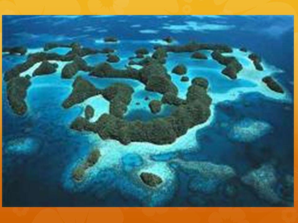 Che cosa vedete Vedete delle isole.