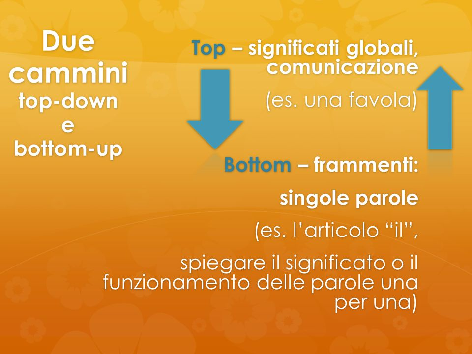 Due cammini top-down e bottom-up