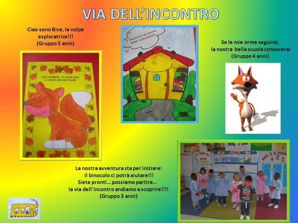 VIA DELL'INCONTRO Ciao sono Bice, la volpe esploratrice!!!